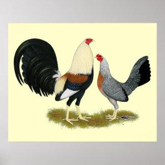 Grey Game Fowl Pair Poster