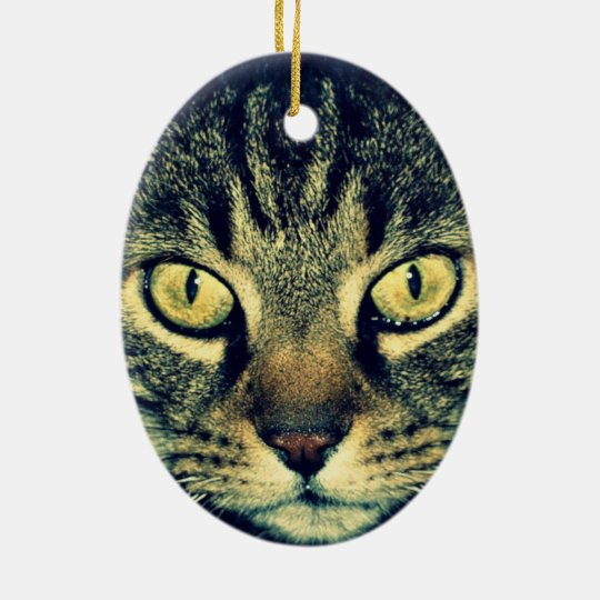 Grey glaring cat ceramic ornament