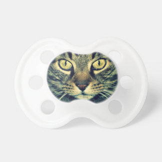 Grey glaring cat pacifier