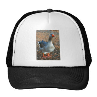Grey Goose 1 Trucker Hat