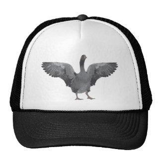 Grey goose cap mesh hats