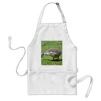Grey Gosling Adult Apron