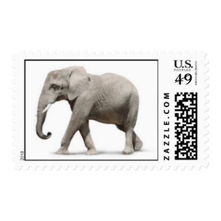 Grey Gray elephant walking wildly animals graph IC Stamp