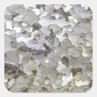 Grey Gray Sycamore Bark Square Sticker