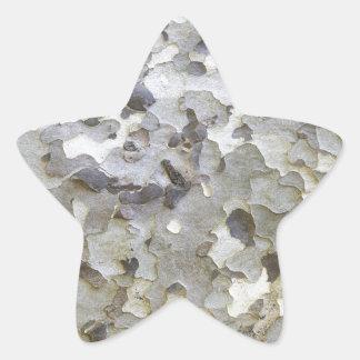 Grey Gray Sycamore Bark Star Sticker
