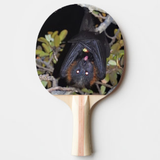 Grey-Headed Flying Fox Ping-Pong Paddle