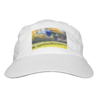 Grey heron, ardea cinerea hat