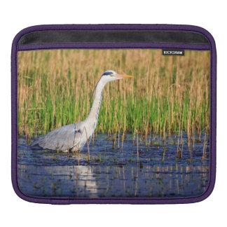 Grey heron, ardea cinerea, in a pond iPad sleeve