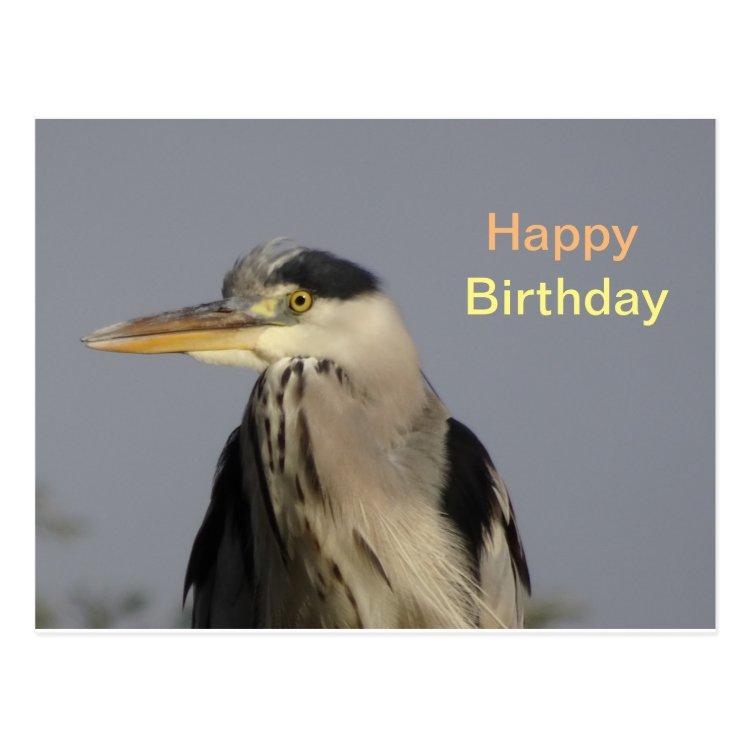Grey Heron Happy Birthday Postcard