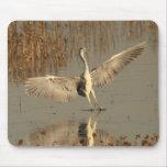 Grey Heron Mousepad