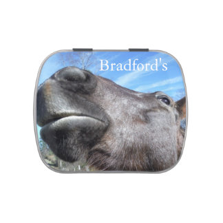 Grey Horse Funny face : personalize Jelly Belly Candy Tin