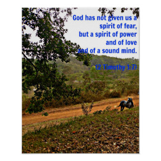 Grey horse inspirational Timothy Bible Verse God Poster