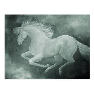 Grey Horse Postcard