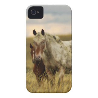 Grey Horse with Baby iPhone 4 Case-Mate Case