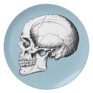 Grey Human Skull side Plate