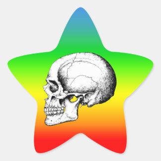 Grey Human Skull side Star Sticker