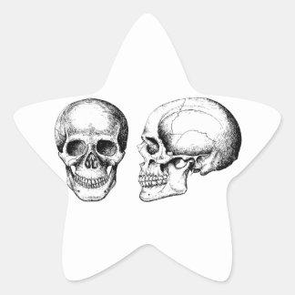 Grey Human Skulls Face Side Star Sticker
