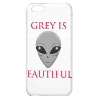 GREY IS BEAUTIFUL CASE FOR iPhone 5C