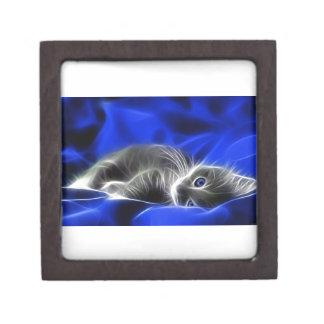 Grey Kitten Awakes Gift Box