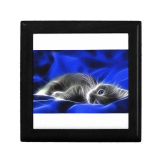 Grey Kitten Awakes Jewelry Box