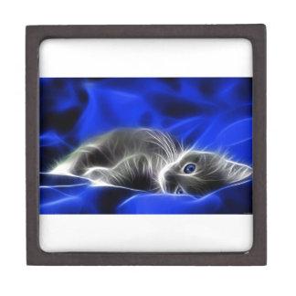 Grey Kitten Awakes Keepsake Box