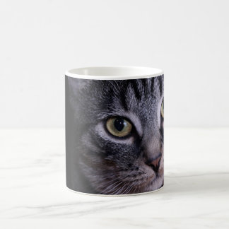 Grey Kitten Face Classic White Coffee Mug