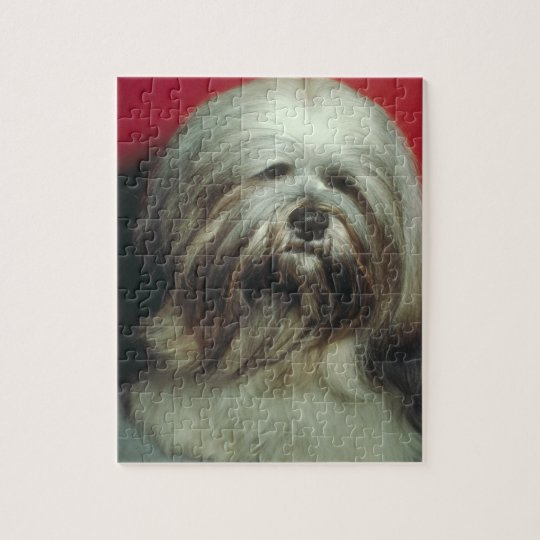 Grey Lhasa Apso Dog Puzzle