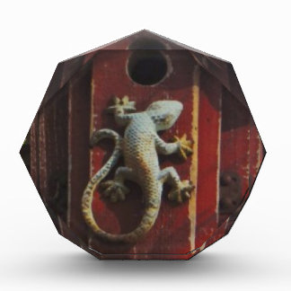 grey lizard on worn wood acrylic award