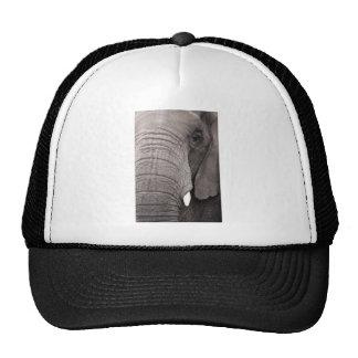 Grey Majesty Trucker Hat