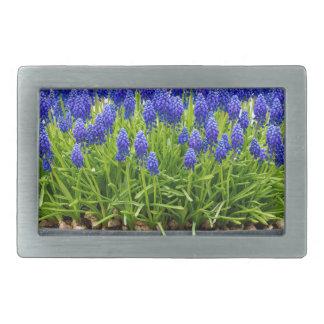 Grey metal flower box with blue grape hyacinths belt buckle