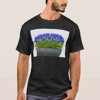 Grey metal flower box with blue grape hyacinths T-Shirt