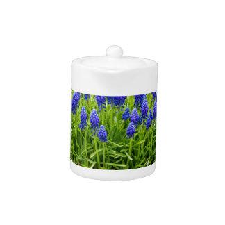 Grey metal flower box with blue grape hyacinths teapot