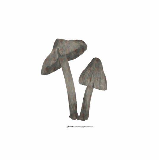 Grey Mushrooms with Flax Sculpture