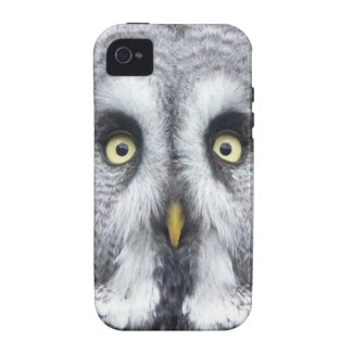 """""""Grey Owl"""" iPhone 4/4S Covers"""