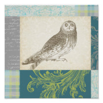 Grey Owl on Pattern Background Poster