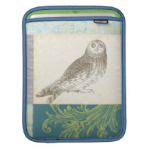 Grey Owl on Pattern Background Sleeve For iPads