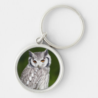Grey owl perched with green blurred background Silver-Colored round keychain