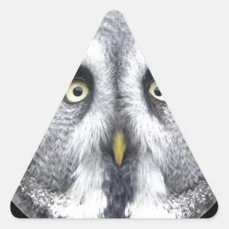 """""""Grey Owl"""" Triangle Sticker"""