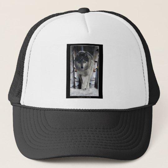 Grey Pack Wolf Alpha Wildlife Art Hat