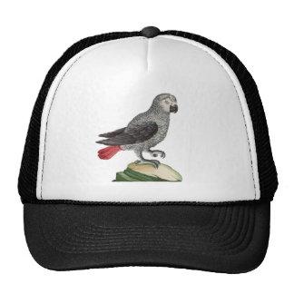 Grey Parrot - Psittacus erithacus Trucker Hat