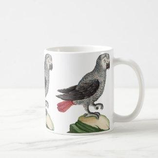 Grey Parrot - Psittacus erithacus Mug