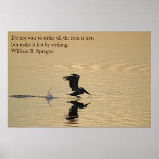Grey Pelican Posters