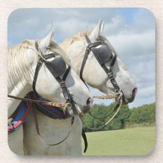 Grey Percheron horses Beverage Coaster