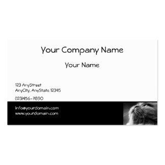 Grey Persian Cat on Black Border Business Card
