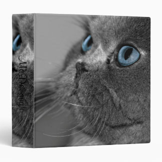 Grey Persian Cat with Blue Eyes 3 Ring Binder