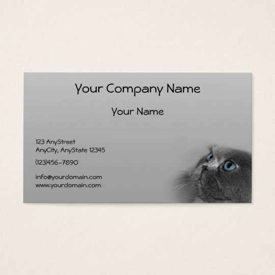 Grey Persian Cat with Blue Eyes on Grey Background Business Card