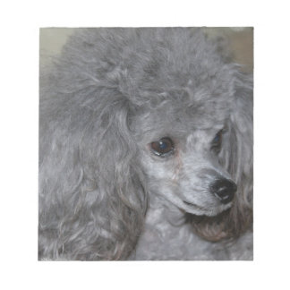 Grey Poodle Notepad