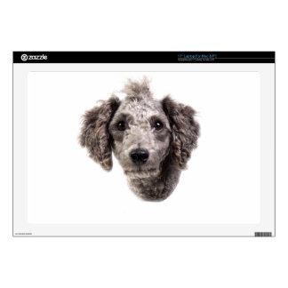 grey punk poodle laptop skin