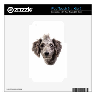 grey punk poodle skins for iPod touch 4G