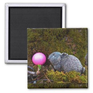 Grey rabbit / bunny and pink golf ball refrigerator magnets